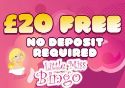 Little Miss Bingo Review