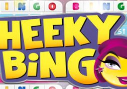 logo-cheeky-bingo