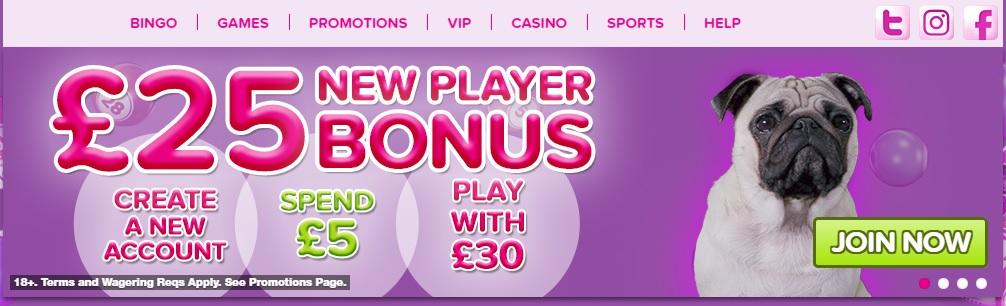 new player bonus