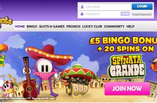 lucky-pants-bingo-featured